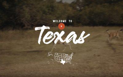 Ask a local over Texas